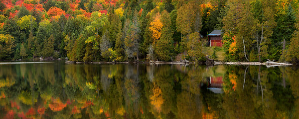 autumn northern Ontario_D8C8863