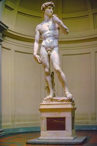 Florence - David 19 nps