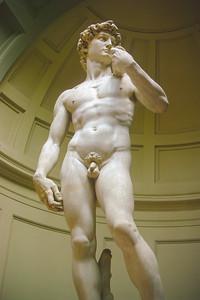 Florence - David 20