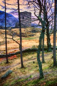700325 Castle Dolbadaern in Wales 5-3