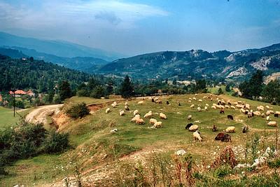 700905 Rural Romania 24