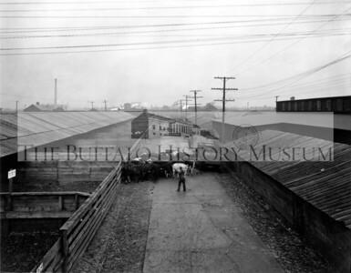 East Buffalo Stockyards