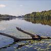 Roanoke river, Plymouth