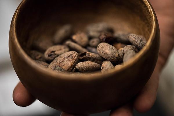 311/366 Cacao