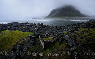 A beached wooden boat overgrown with vegetation at Stokkness Beach in Iceland