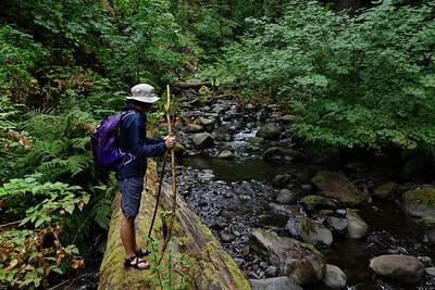 08/13 - Moffett Creek