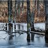 Adirondacks Lake Durant November 2015 Frozen Pond 7