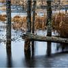 Adirondacks Lake Durant November 2015 Frozen Pond 5