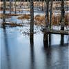 Adirondacks Lake Durant November 2015 Frozen Pond 6
