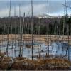 Adirondacks Lake Durant November 2015 Frozen Pond 8