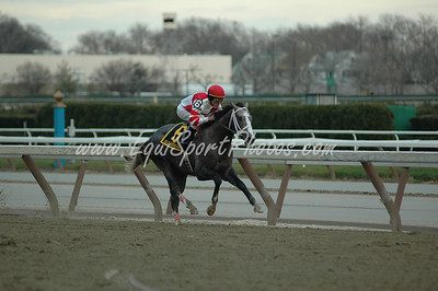 Old Fashioned wins the Remsen at Aqueduct, November 29, 2008.  Ramon Dominguez up.  DB