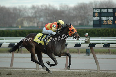 Springside wins the Demoiselle at Aqueduct, November 29, 2008.  Garrett Gomez up.  DB