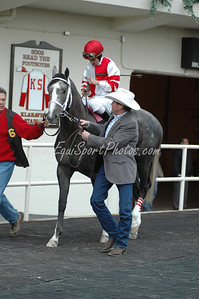 Larry Jones leads Old Fashioned in the winner's circle before the Remsen at Aqueduct, November 29, 2008.  DB