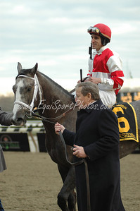 Rick Porter and his Old Fashioned head to the winner's circle after winning the Remsen at Aqueduct, November 29, 2008.  Ramon Dominguez up.  DB