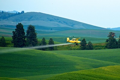 Crop Duster spraying fields in the Palouse