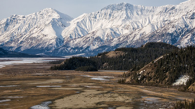 Kluane National Park; Yukon Territory. Looking up the Slims River Valley at the lower knolls of Sheep Mountain where we hoped to find dall sheep rams. No luck; we had to climb to high country.