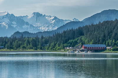 Quiet morning on Letnikof Cove; Haines, Alaska.