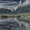 Sinister Chilkat reflection