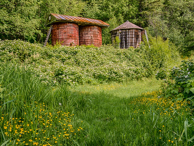 Wildflowers and water tanks at Letnikof Cove