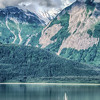 Sailing on the Chilkat