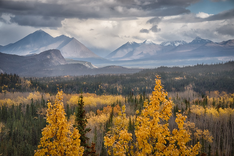 Moments of light grace, golden hues frame distant peaks, Denali country.