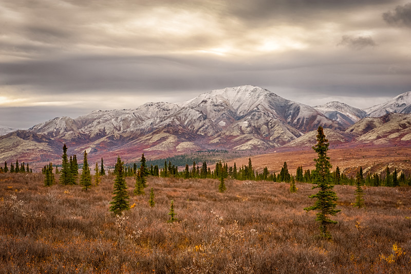 The peak tundra foliage is passed, but there is still some luscious red upon the flanks of the mountains.