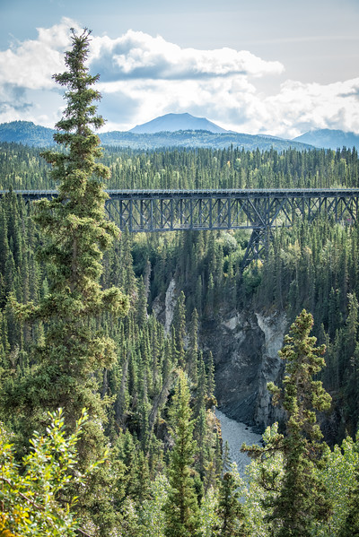 Along the McCarthy Road (Mile 17) the Kuskulana Bridge was a major trestle along the Copper River and Northwestern Railway line completed in 1911 to transport copper ore from Kennecott to Cordova.  The Kuskulana Bridge spans a 238' gorge. The bridge was constructed during the winter of 1910.