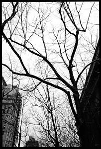 New York City, 2001.