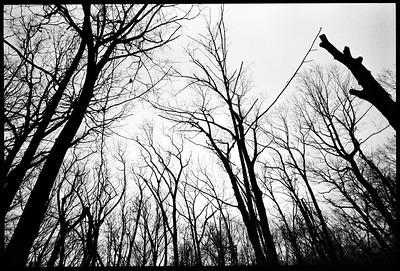Clausland Mountain County Park, Rockland County NY, 1998.
