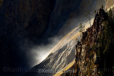 A mist from Yellowstone Falls and small cluster of trees and cliff band high lighted by a sun beam in the Grand Canyon of the Yellowstone.