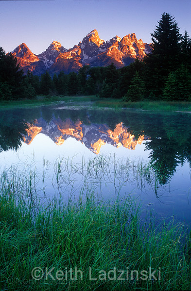 Tetons reflected in a beaver pond, teton national park Wyoming