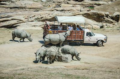 Photo Safari at the Wild Animal Park
