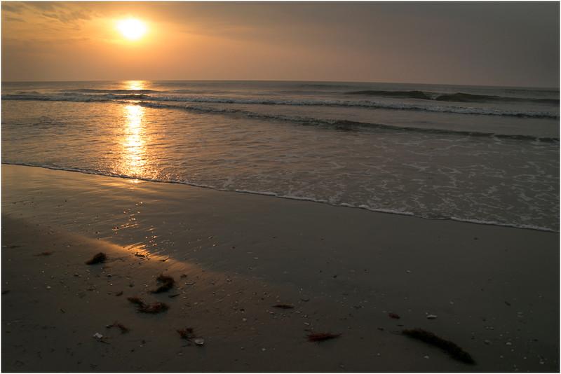 Avalon NJ Dunes Beach Sunrise with Seaweed September 2012