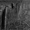 Avalon NJ Dune Fence 1 July 2014