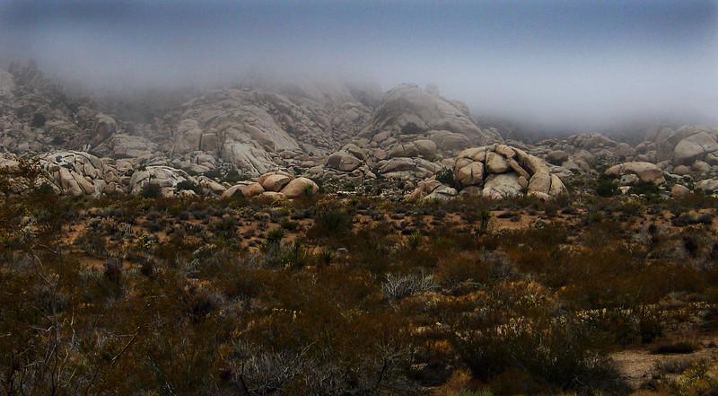 Mojave Desert California February 2007 Sagebrush Mist and Pinnacles