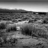 Mojave Desert California 2007 Landscape