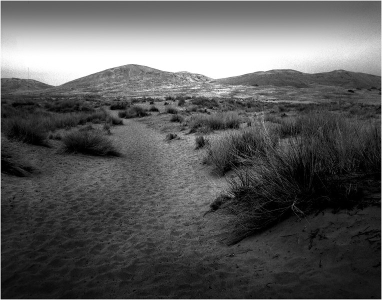 Path Mojave Desert California