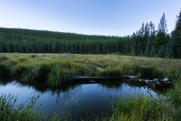 20160910_KW_LN_CottonWood_Beaver_Ponds-2