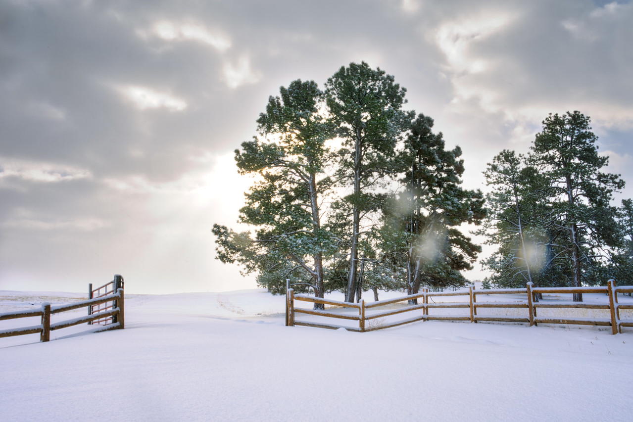 20150201_KW_LN_Open_Snowy_Field