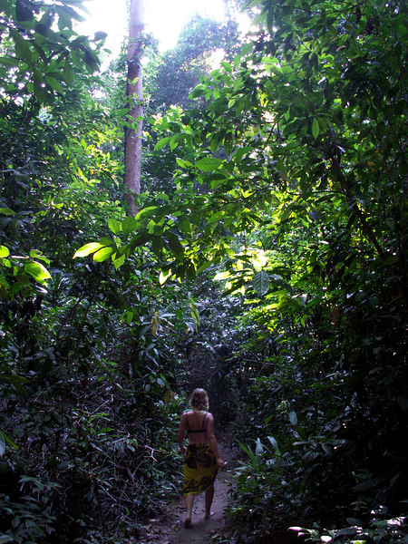 walking through the jungle to the other side of the island.. barefoot - Perhentian islands Kecil '06