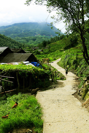 'secret village' - when we drove in on our motorbike there were a lot of surprised faces looking at us. When a farmdog started growling at us we knew we were off the beaten track but luckily a elderly villager greeted us with a smile - Sapa, vietnam '08