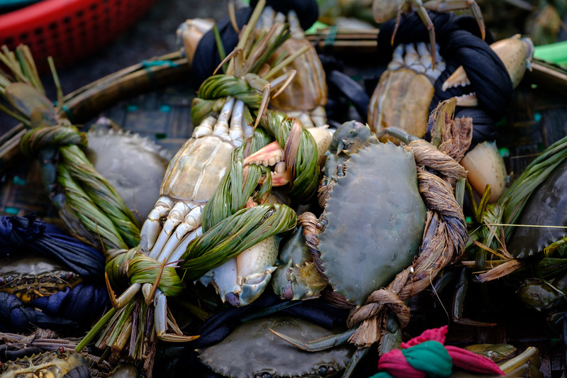 Wrapped Up Crabs