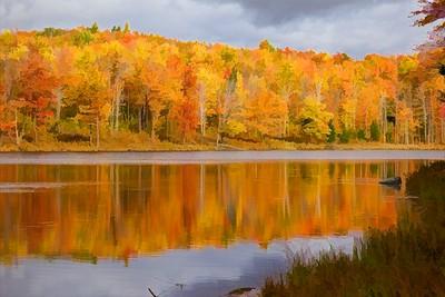 Reflections on Preston Pond Bolton, VT