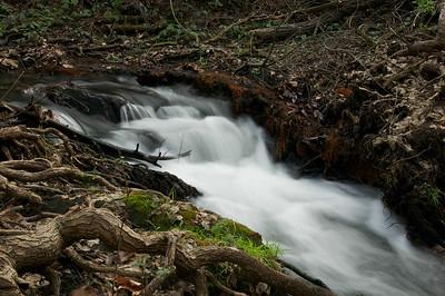 Los Alamitos Trail Pt 2 044