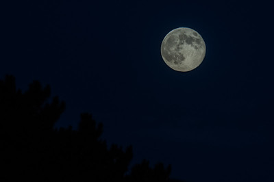 Full Moon 081014-0112