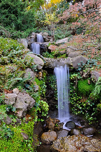 Hakone Gardens 032