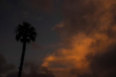 Sunset Clouds 083118-1730