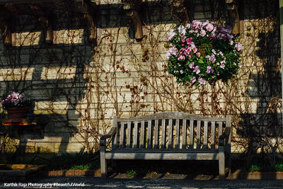 Bench, Chicago Botanic Garden May 2016