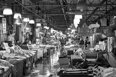 Fresh Fish Market - Seoul, South Korea