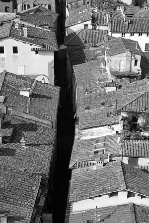 Rooftops - Lucca, Italy